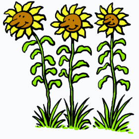 A cartoon drawing of three sunflowers, each one has a face in the middle of the flower and they are all smiling.