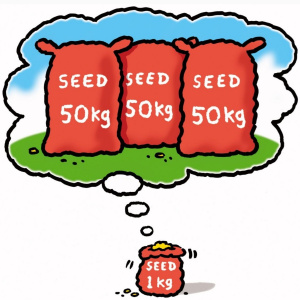 A cartoon drawing of a red sack of seeds saying 'Seed 1kg' on it. Above the sack is a thought bubble, which has three bigger red sacks of seed in it, each one says 'Seed 50kg' on it.