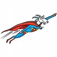 A cartoon drawing of a goat flying through the air wearing a superman costume and a bell around its neck.