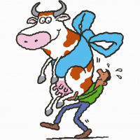 A cartoon drawing of a man carrying a large white cow with brown spots and grey horns. The cow is smiling and has a blue bow tied around its stomach, like a present.