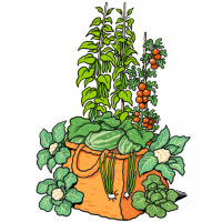 A cartoon drawing of a basket overflowing with green vegetables, and vines growing out of the top.